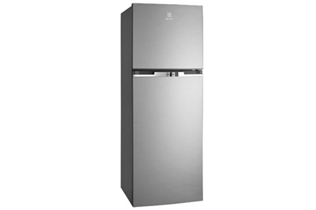 electrolux-etb2100mg-300×300