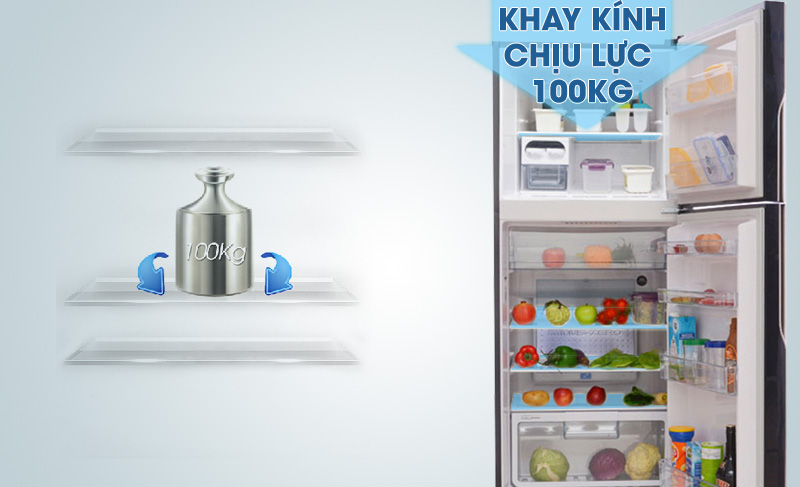 khay kệ tủ lạnh R-VG440PGV3 (GBW)