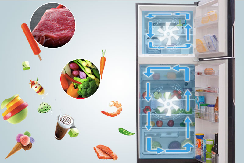 Hệ thống làm lạng trong tủ lạnh R-VG440PGV3 (GBK)