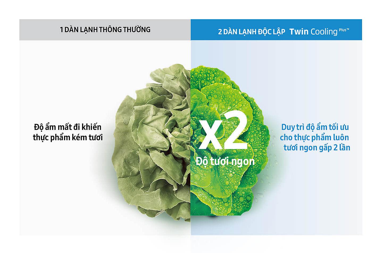 Tủ lạnh Samsung Inverter 362 lít Twin Cooling Plus RT35K5982 DX Duy trì độ ẩm tối ưu