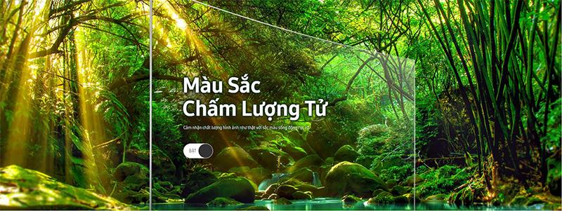Smart Tivi QLED Samsung 4K 55 inch QA55Q8CNAKXXV màu sắc chấm lượng tử