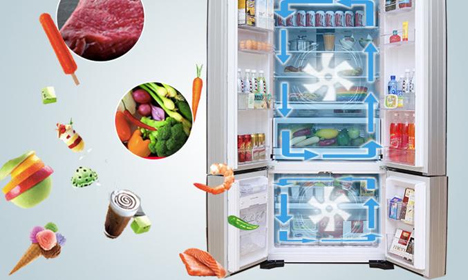 Khả năng làm lạnh kép trong tủ lạnh R-WB730PGV6X (XGR)