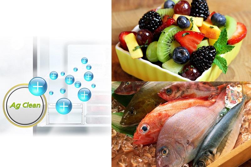 Tủ lạnh Panasonic Inverter 303 lít NR-BL348PSVN tinh thể bạc khử mùi