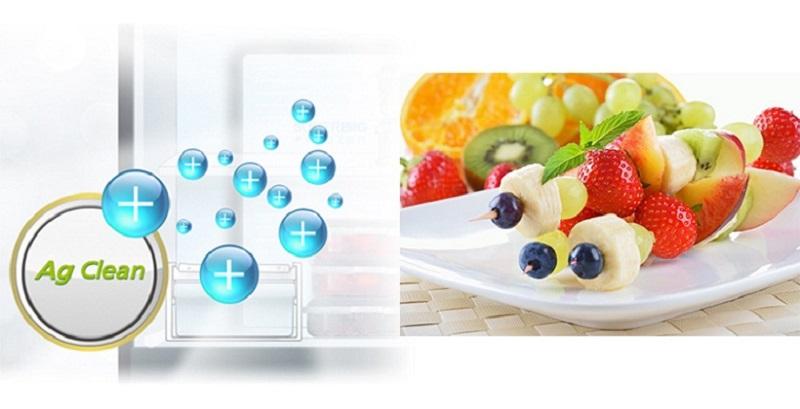 Tủ lạnh Panasonic 290 lít NR-BV329XSVN phân tử bạc