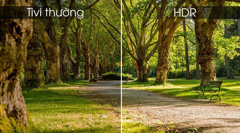Công nghệ HDR - Smart Tivi TCL 4K 50 inch L50P65-UF